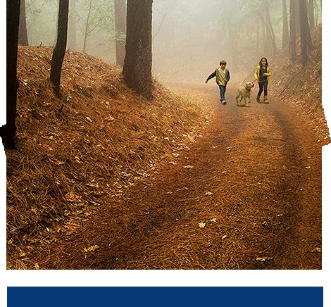 Formation : MSW / Règlement Général sur la Protection des Données